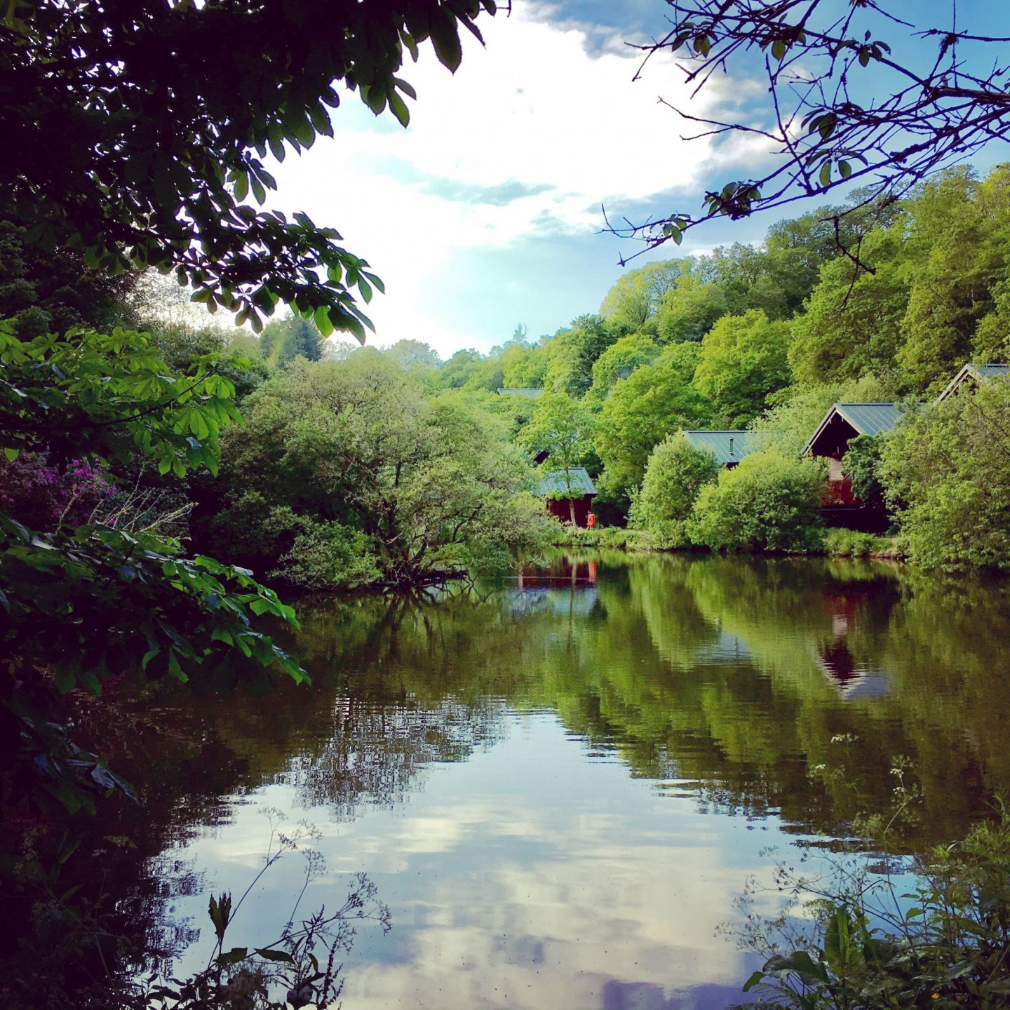 Why Forest Holidays in Cornwall is the Perfect Family Holiday